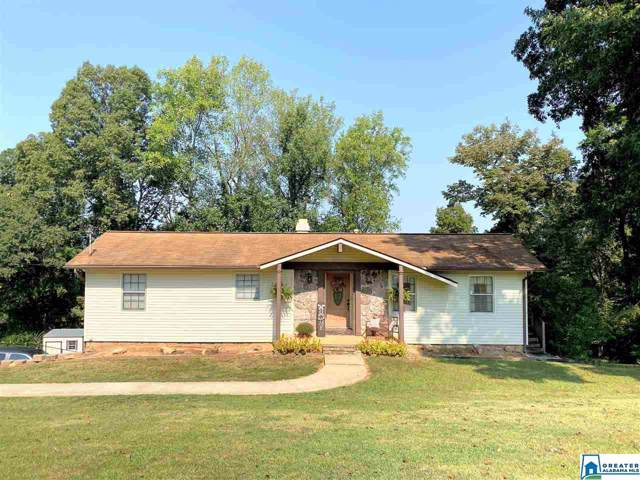 127 Tomahawk Trl, Anniston, AL 36206 (MLS #864154) :: Josh Vernon Group