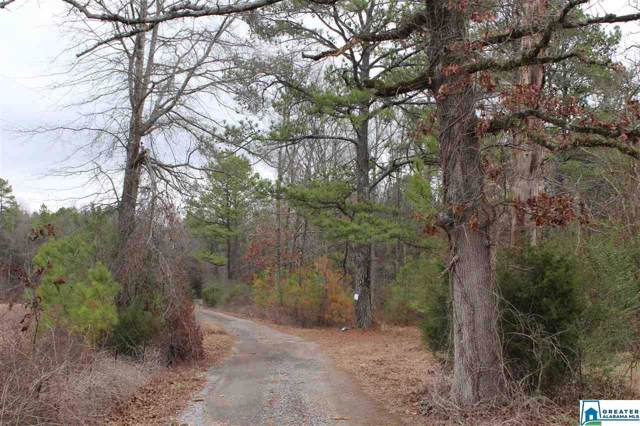 0 Jones Village Rd #0, Springville, AL 35146 (MLS #864199) :: Josh Vernon Group