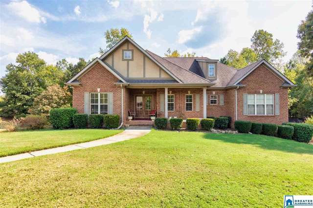 388 Deer Ridge Ln, Chelsea, AL 35043 (MLS #864298) :: Josh Vernon Group