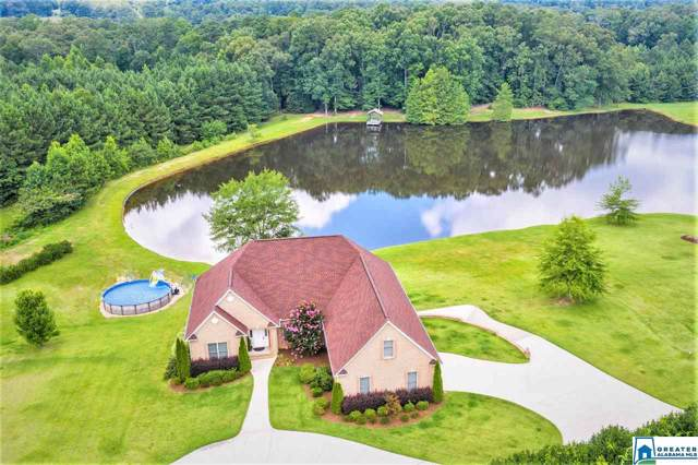 10101 Hwy 411, Odenville, AL 35120 (MLS #864374) :: Josh Vernon Group