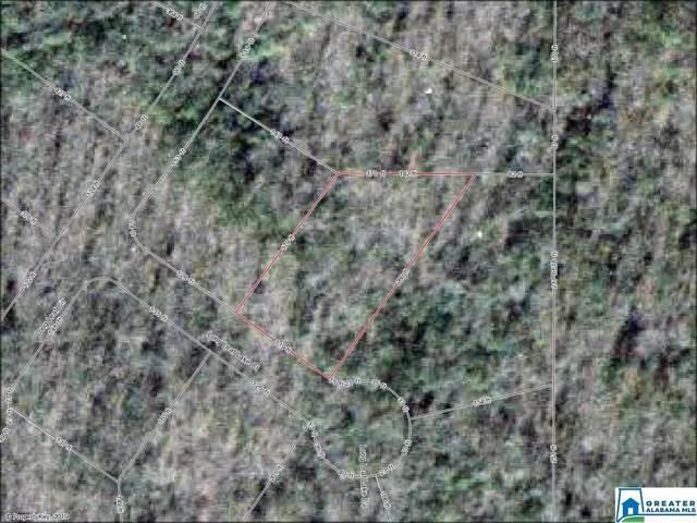 3005 Long Leaf Lake Ct #321, Bessemer, AL 35022 (MLS #864538) :: Josh Vernon Group