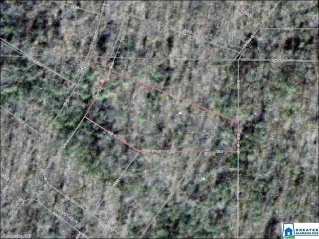 2043 Long Leaf Lake Cir #323, Bessemer, AL 35022 (MLS #864540) :: Josh Vernon Group