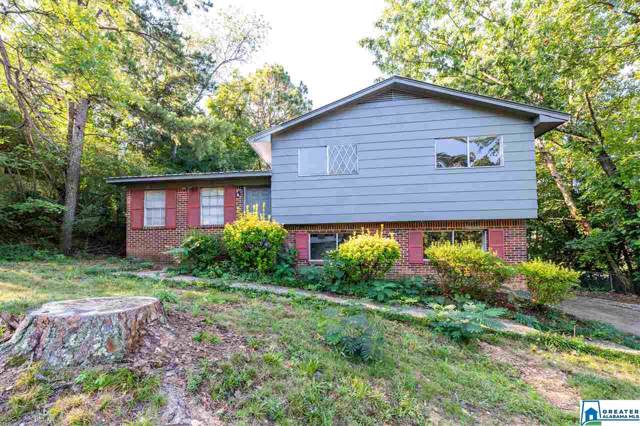 605 Country View Dr, Birmingham, AL 35215 (MLS #864612) :: Brik Realty