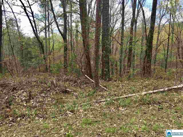 Woodbine Ln Lot 108 - 108A, Pinson, AL 35126 (MLS #864710) :: Gusty Gulas Group