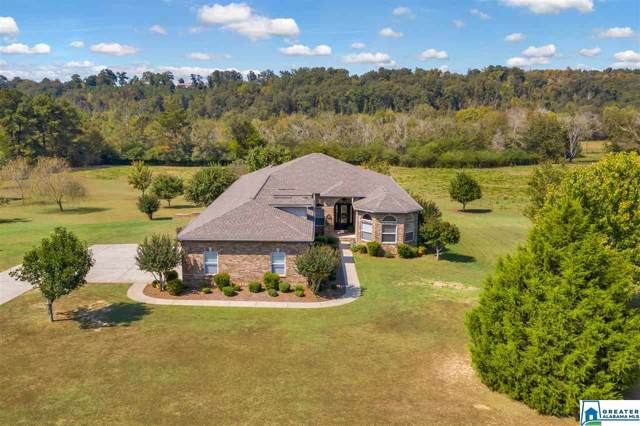 1169 Butts Rd, Blountsville, AL 35031 (MLS #864714) :: LocAL Realty