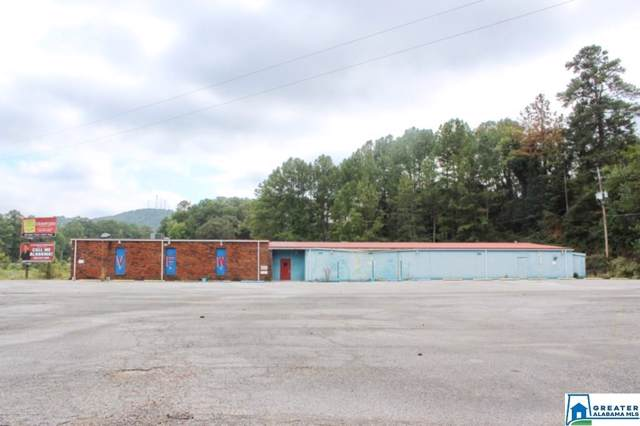 100 Hwy 431, Anniston, AL 36201 (MLS #864760) :: Gusty Gulas Group
