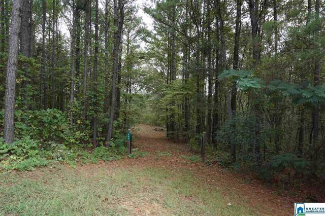 893 Old Patton Ferry Rd #0, Adger, AL 35006 (MLS #864935) :: LocAL Realty