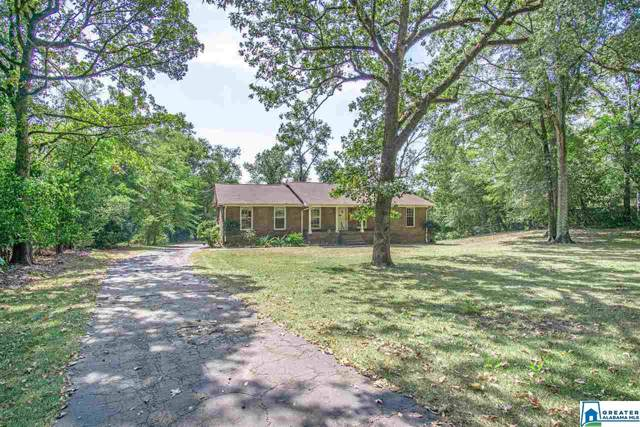 2917 Pump House Rd, Mountain Brook, AL 35243 (MLS #864996) :: LocAL Realty