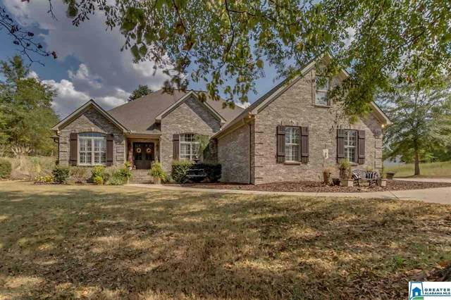 11328 Brant Ward Rd, Cottondale, AL 35453 (MLS #865013) :: Brik Realty