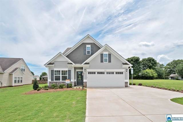 645 Twin Ridge Cir, Lincoln, AL 35096 (MLS #865024) :: Josh Vernon Group