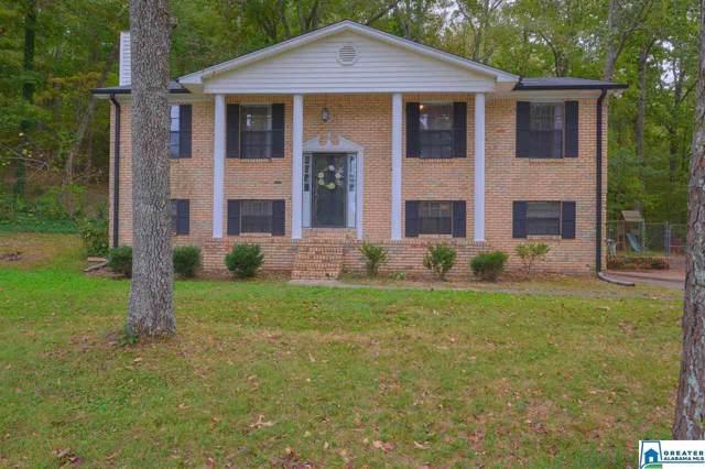 6300 Stonehaven Ln, Pinson, AL 35126 (MLS #865112) :: LocAL Realty