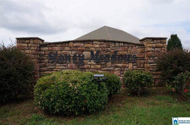 604 Hidden Brook Trl Lot 42, Maylene, AL 35114 (MLS #865222) :: Gusty Gulas Group