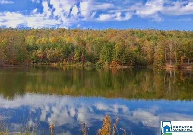 181 Ridgeline Dr Ridgeline Lake , Pelham, AL 35043 (MLS #865412) :: Brik Realty