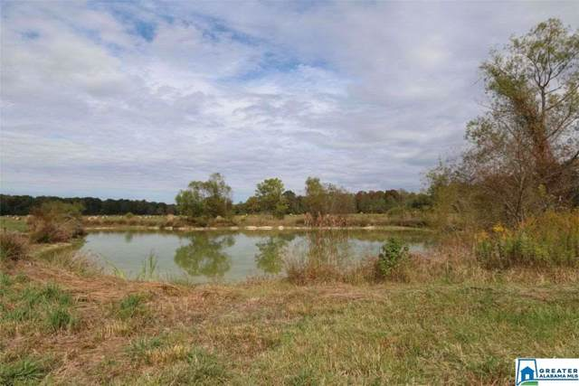 0 Hwy 411 110+/- Acres, Ashville, AL 35953 (MLS #865700) :: Brik Realty