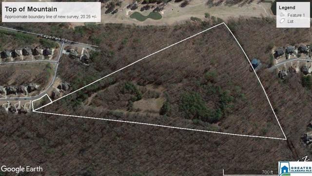 Enter thru 1125 Eagle Park Rd Mountain Top, Birmingham, AL 35242 (MLS #865766) :: LocAL Realty