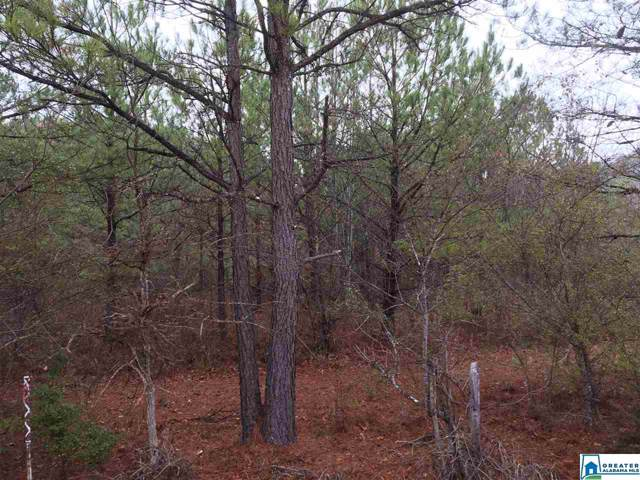 Jackson Trace Rd 28 Acres, Ohatchee, AL 36271 (MLS #865881) :: LocAL Realty