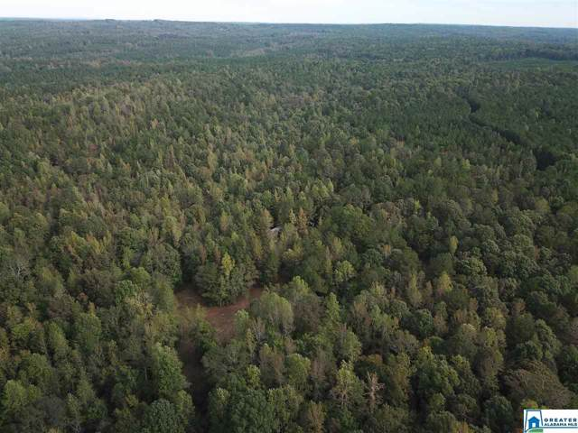 0 Co Rd 823 None, Wadley, AL 36276 (MLS #865925) :: Gusty Gulas Group