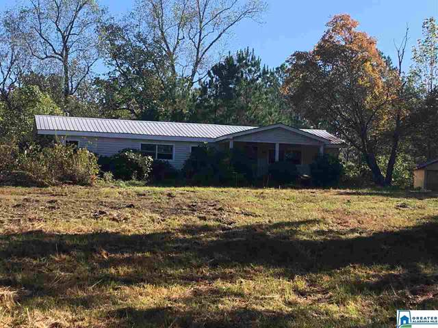 9300 Sunview Dr, Warrior, AL 35180 (MLS #866004) :: Bentley Drozdowicz Group