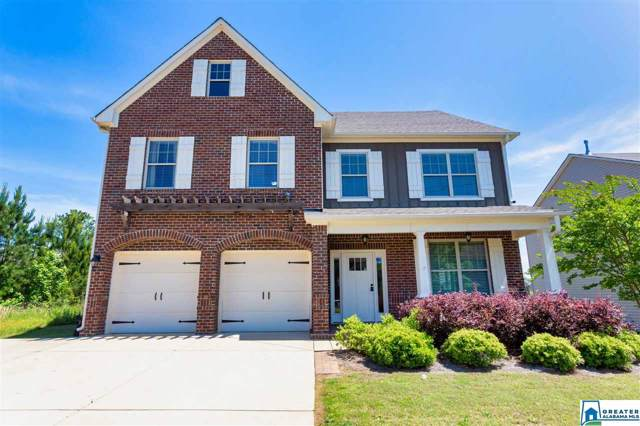 358 Blackberry Blvd, Springville, AL 35146 (MLS #866155) :: Josh Vernon Group