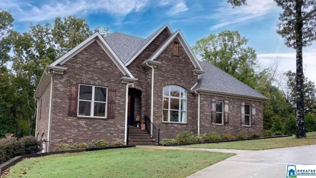 678 Cody Cir, Springville, AL 35146 (MLS #866182) :: Josh Vernon Group