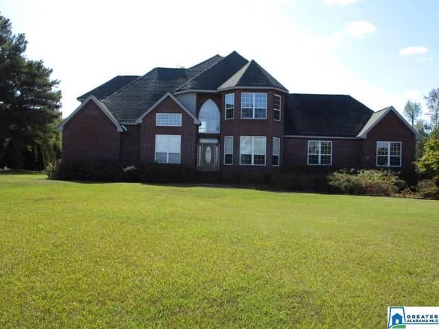 2620 Kelly Creek Rd, Odenville, AL 35120 (MLS #866360) :: Brik Realty
