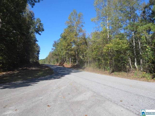 State Lake Rd 13 Acres, Lineville, AL 36266 (MLS #866676) :: Bentley Drozdowicz Group