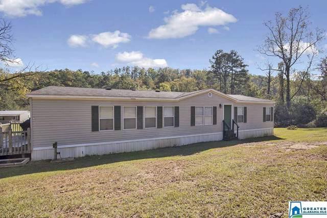 560 Roulain Rd, Odenville, AL 35120 (MLS #866995) :: Josh Vernon Group