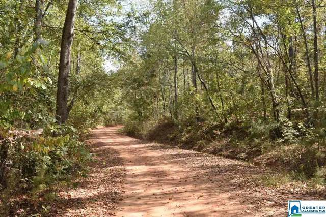 Co Rd 249 24 Acres, Newell, AL 36280 (MLS #867335) :: Gusty Gulas Group