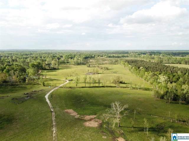 Hwy 69 244 Acres, PROVIDENCE, AL 36742 (MLS #867533) :: Gusty Gulas Group