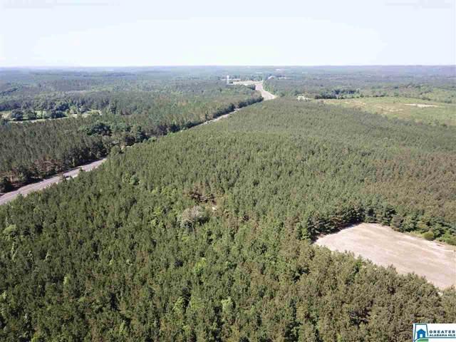 Hwy 43 279 Acres, GROVE HILL, AL 36451 (MLS #867535) :: Gusty Gulas Group