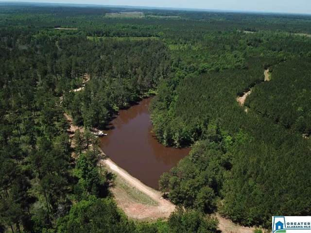 Co Rd 7 152 Acres, THOMASVILLE, AL 36784 (MLS #867536) :: LocAL Realty