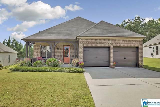 585 Village Springs Ln, Springville, AL 35146 (MLS #867750) :: LocAL Realty