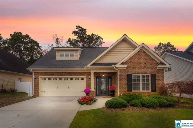 51 Jenkins Rd, Oxford, AL 36203 (MLS #867752) :: Josh Vernon Group