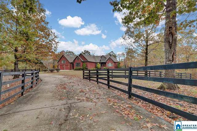 1345 Co Rd 133, Jemison, AL 35085 (MLS #867848) :: Josh Vernon Group