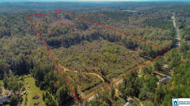 0 Co Rd 29 #1, Thorsby, AL 35171 (MLS #867929) :: Josh Vernon Group