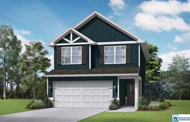 625 Briar Ridge Cir, Odenville, AL 35120 (MLS #867950) :: Josh Vernon Group