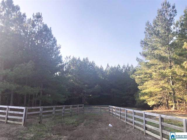 Co Rd 10 36 Ac, Ranburne, AL 36273 (MLS #868097) :: Bentley Drozdowicz Group