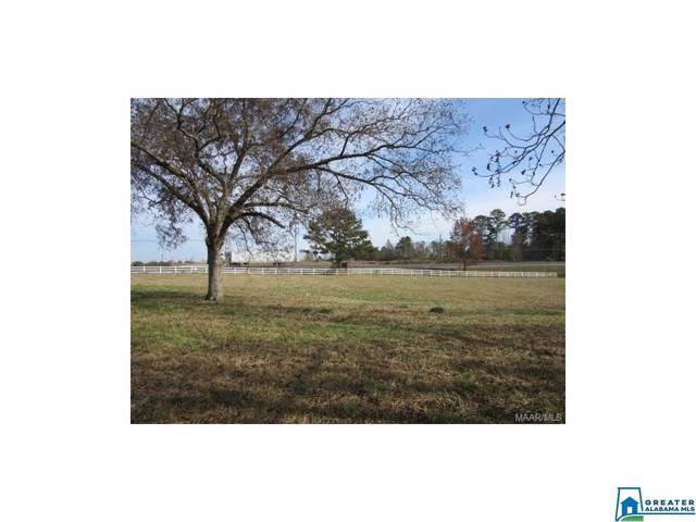 1 Lay Dam Rd #1, Clanton, AL 35045 (MLS #868133) :: Gusty Gulas Group