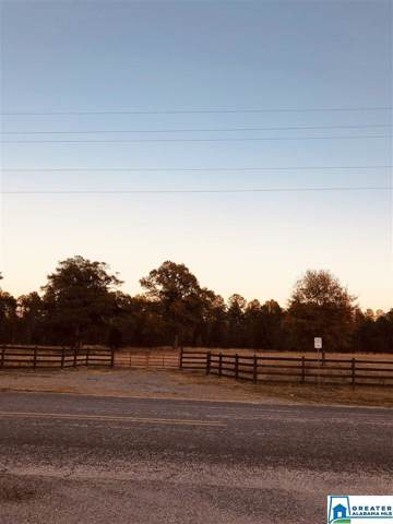 000 Faye S Perry Dr #0, Childersburg, AL 35044 (MLS #868163) :: LocAL Realty