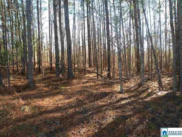 21 Driftwood Ln #214, Sylacauga, AL 35151 (MLS #868193) :: Brik Realty