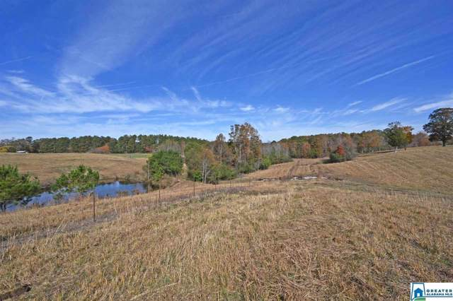 0 Co Rd 63 #0, Houston, AL 35572 (MLS #868282) :: Sargent McDonald Team