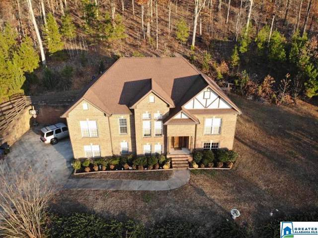 995 Brooke Ln, Trussville, AL 35173 (MLS #868716) :: Josh Vernon Group