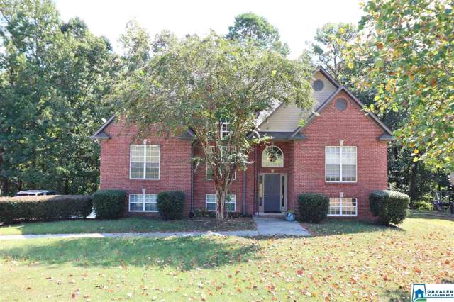 265 South Haven Cir, Odenville, AL 35120 (MLS #869747) :: Gusty Gulas Group