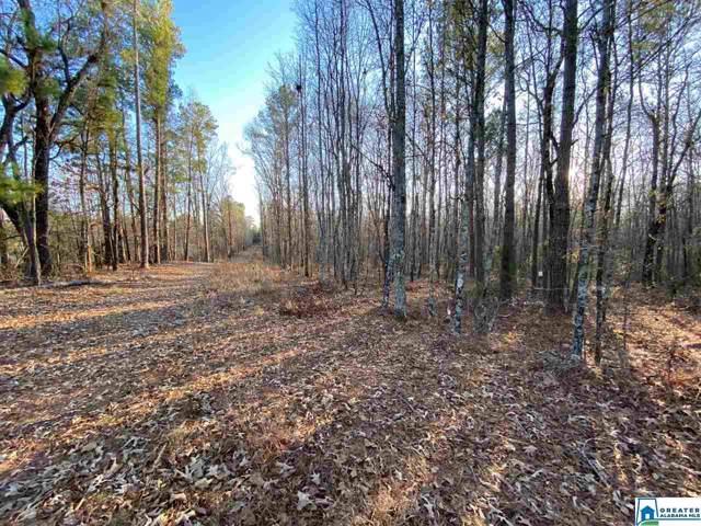0 Florida Rd 20 Acres, Pell City, AL 35125 (MLS #870019) :: Josh Vernon Group