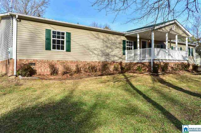 60 Cooper Hill Rd, Ashville, AL 35953 (MLS #870196) :: LocAL Realty