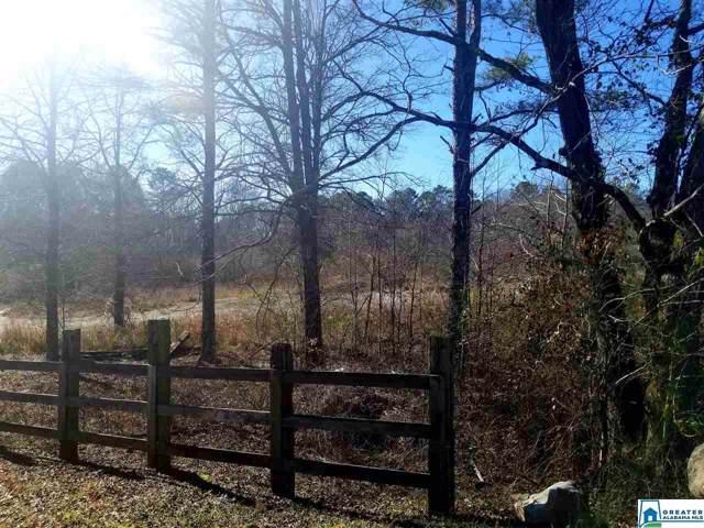 0 Bear Creek Rd #0, Sterrett, AL 35147 (MLS #871089) :: Josh Vernon Group
