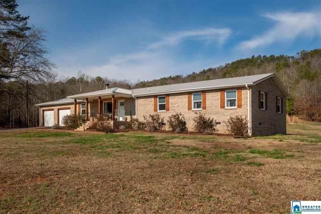 1220 Canoe Creek Rd, Springville, AL 35146 (MLS #871673) :: Josh Vernon Group