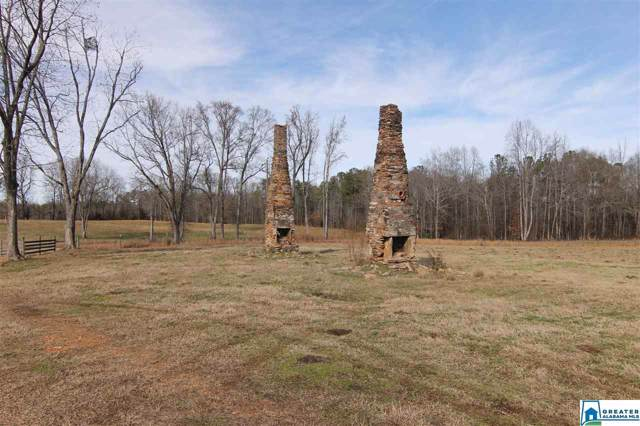 70 Bishop Rd 135 Ac, DAVISTON, AL 36256 (MLS #871684) :: Josh Vernon Group