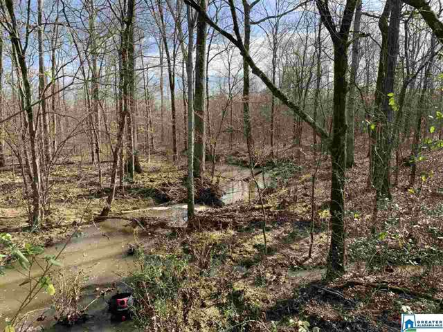 15 acres Crump Ln 15 Acres, Steele, AL 35987 (MLS #871786) :: LocAL Realty