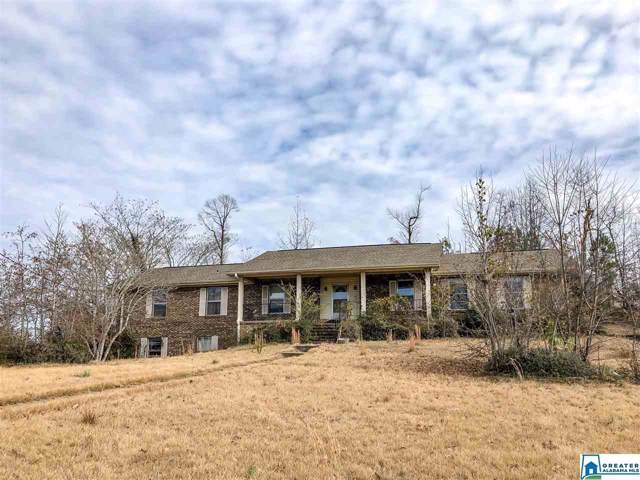 501 35TH AVE E, Tuscaloosa, AL 35404 (MLS #872037) :: Josh Vernon Group
